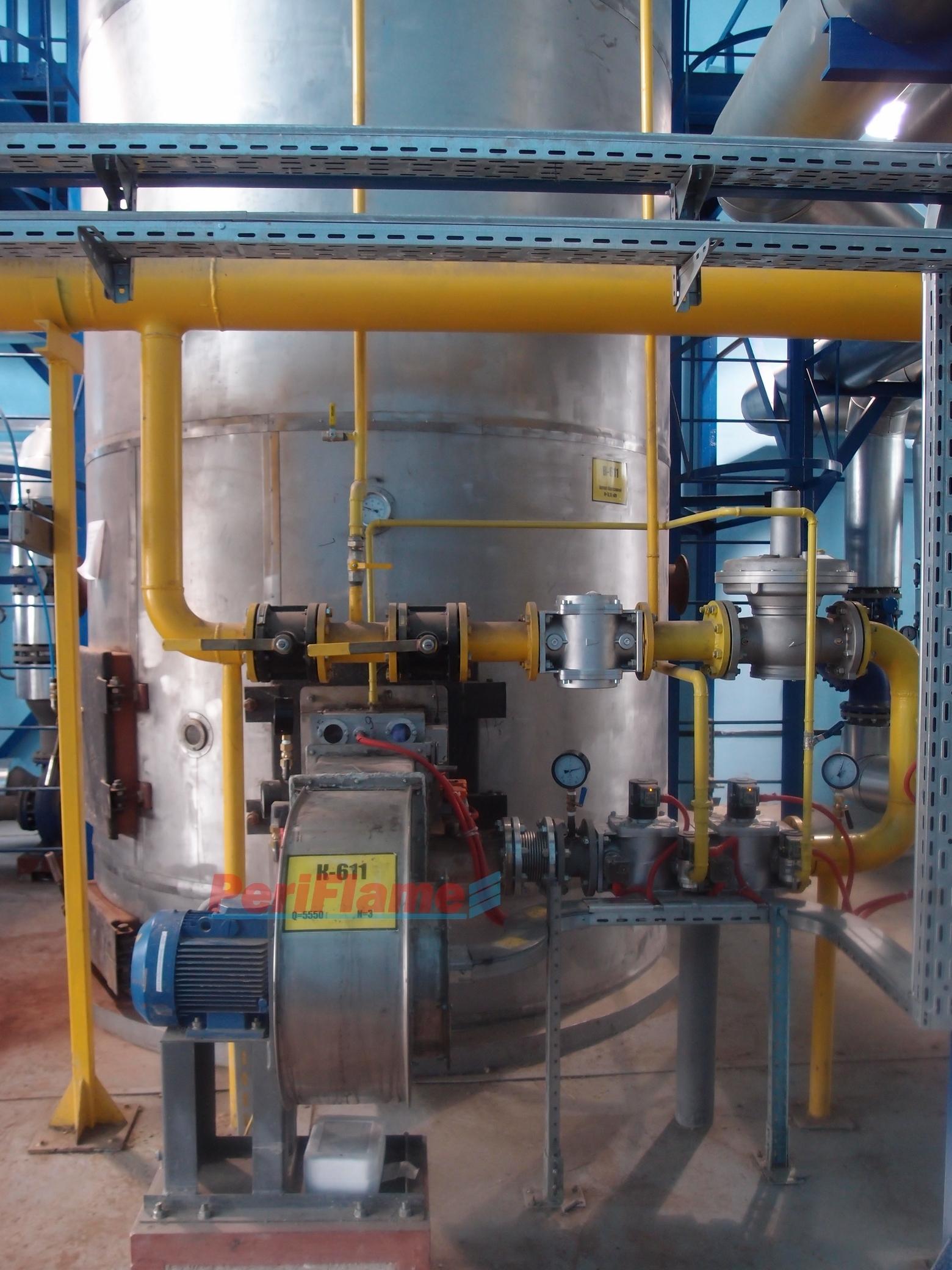 Biogas burner